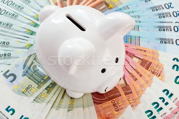Piggy bank surrounded by Euro notes Stock photo © Grazvydas