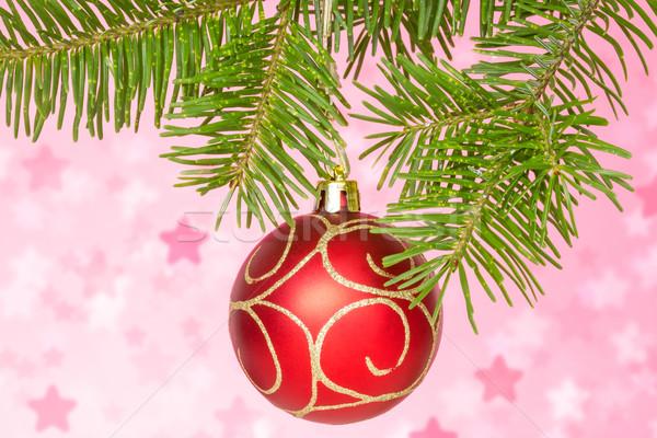 Rosso gingillo ramo Natale Foto d'archivio © Grazvydas
