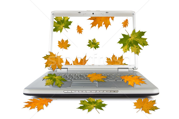 Autumnal leaves falling out of computer Stock photo © Grazvydas
