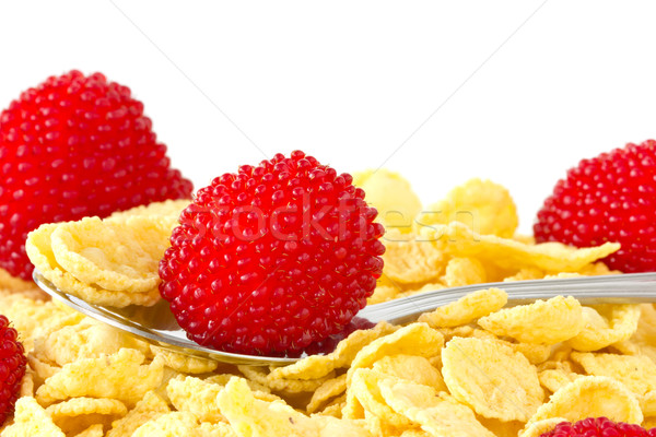 Breakfast cereal with red berries  Stock photo © Grazvydas