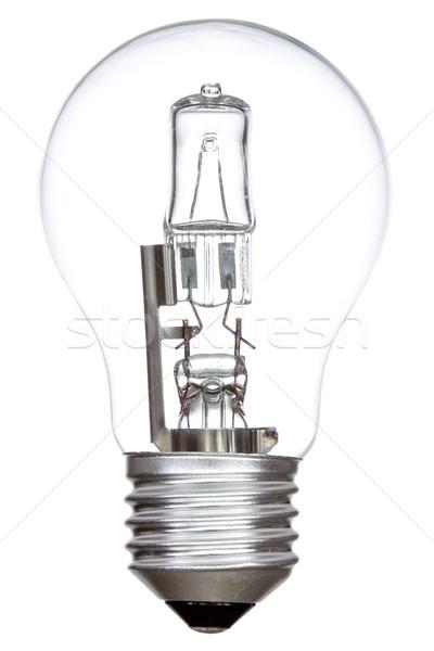 Halojen ampul yalıtılmış beyaz lamba enerji Stok fotoğraf © Grazvydas