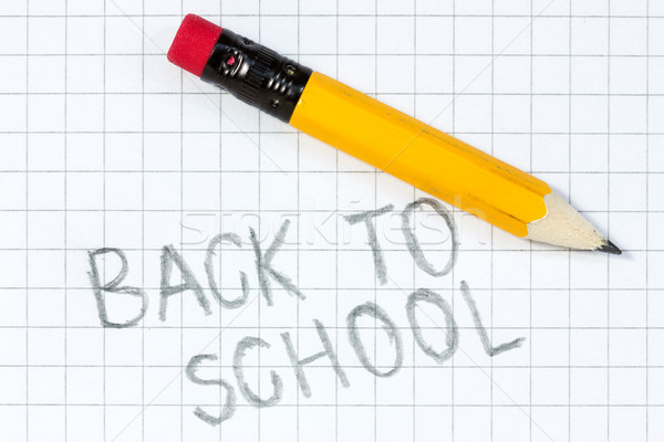 'Back to school' written on a squared Stock photo © Grazvydas