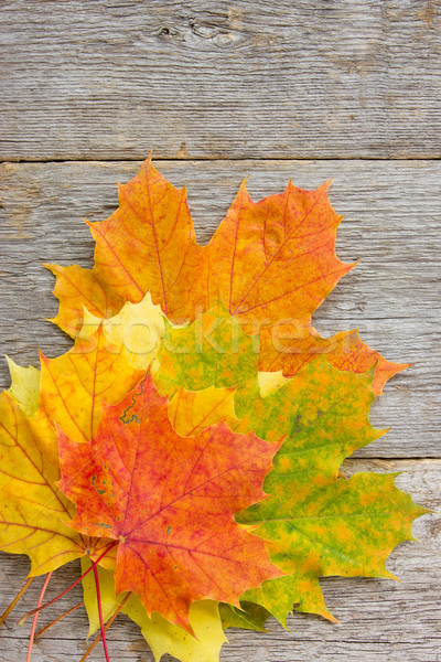 листьев доски текстуры Сток-фото © Grazvydas