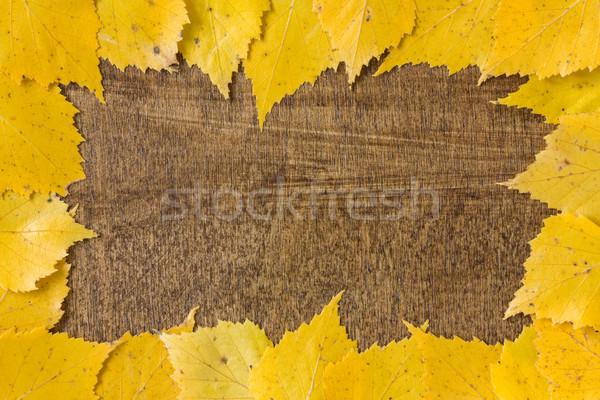 Autumn border from fallen leaves Stock photo © Grazvydas