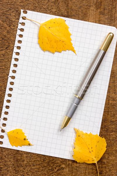 Papier vel pen bladeren hout Stockfoto © Grazvydas