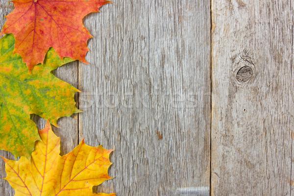 доски текстуры древесины дизайна Сток-фото © Grazvydas