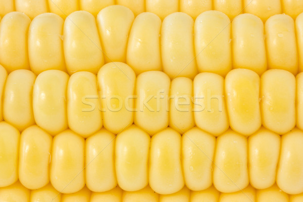 background of yellow sweet corn Stock photo © Grazvydas
