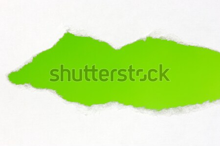 Torn paper with green space Stock photo © Grazvydas