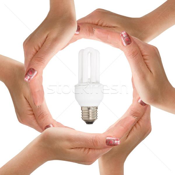 Mãos isolado branco lâmpada energia Foto stock © Grazvydas