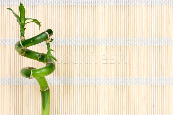 Bambu palha verde planta textura abstrato Foto stock © Grazvydas