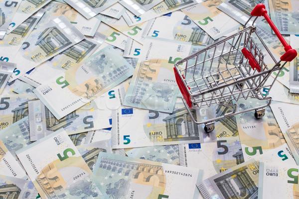 Корзина многие пять евро Постоянный Сток-фото © Grazvydas
