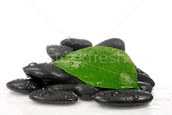 Zen pietre foglia verde pietra nero Foto d'archivio © Grazvydas