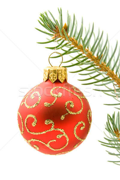 Christmas bauble hung on the branch Stock photo © Grazvydas