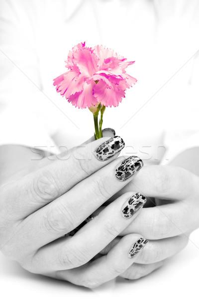 рук розовый гвоздика цветок женщины Сток-фото © Grazvydas