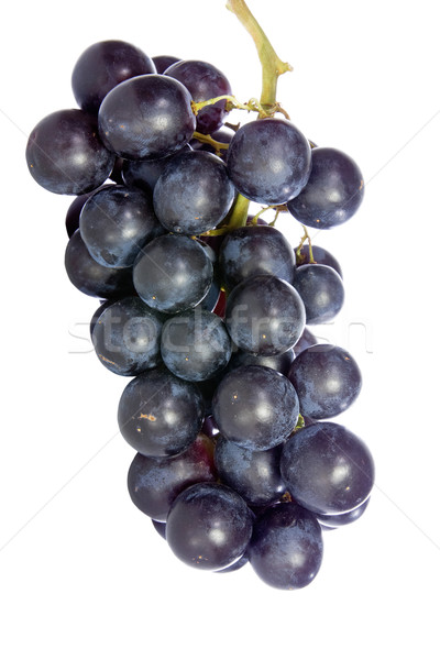 bunch of blue grape isolated on white Stock photo © Grazvydas