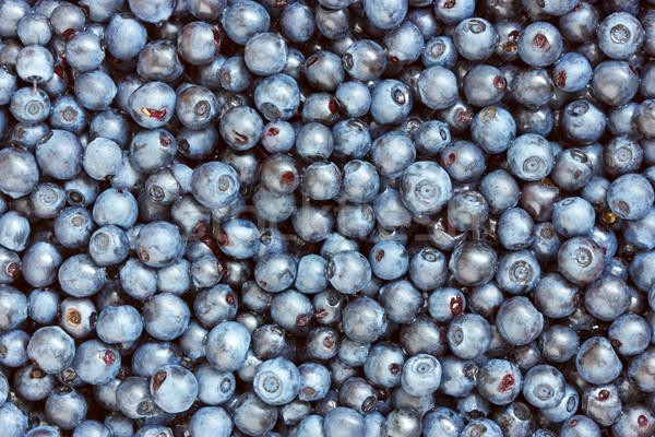 background of freshly picked blueberries Stock photo © Grazvydas
