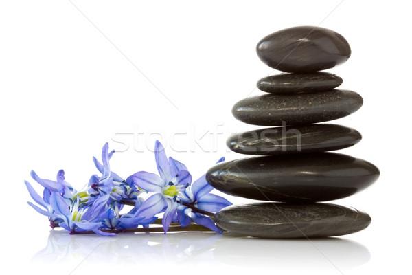 Nero pietre blu fiori bianco bottiglia Foto d'archivio © Grazvydas