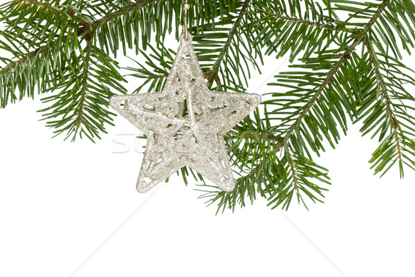 Weihnachten Silber Sterne Tanne Zweig isoliert Stock foto © Grazvydas