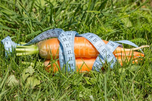 Сток-фото: морковь · трава · рулетка · природы · завода · еды