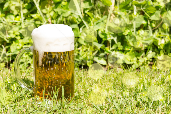 Glass with beer on the green grass Stock photo © Grazvydas