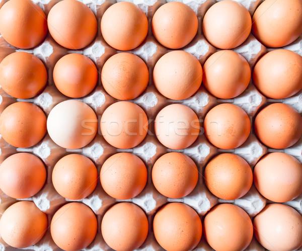 ブラウン 卵 生 グレー コンテナ ストックフォト © gregorydean