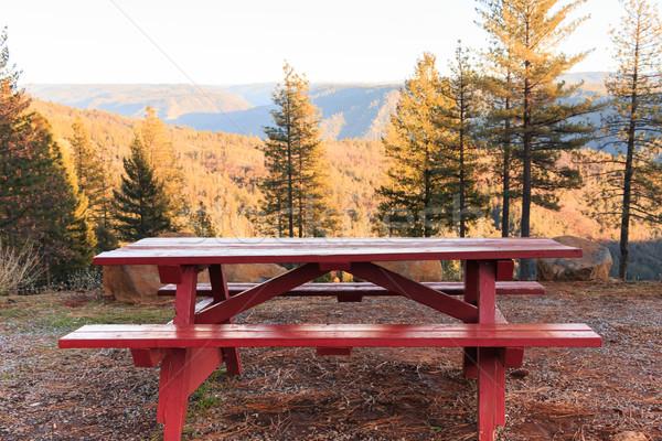 Picknicktafel bos Rood buiten boom voorjaar Stockfoto © gregorydean