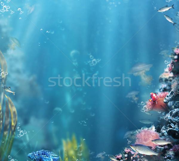 Marines mer vie aquarium eau Photo stock © gromovataya