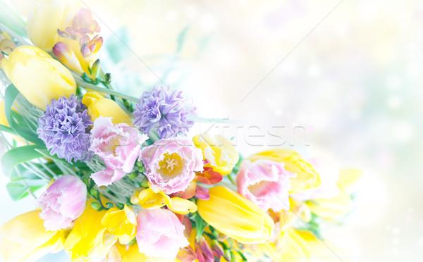 Gyönyörű tavaszi virágok természet keret művészet ünnepi Stock fotó © gromovataya