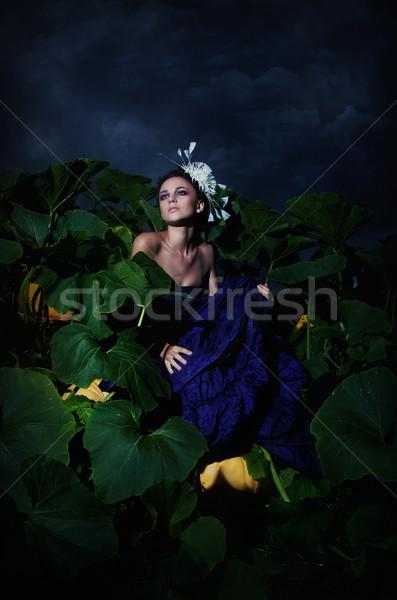 Nocturnal scene - cinderella in pile heap of ripe pumpkins Stock photo © gromovataya