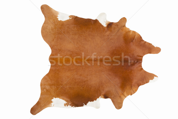 Furry Russet Pelage as a Rug Stock photo © gromovataya