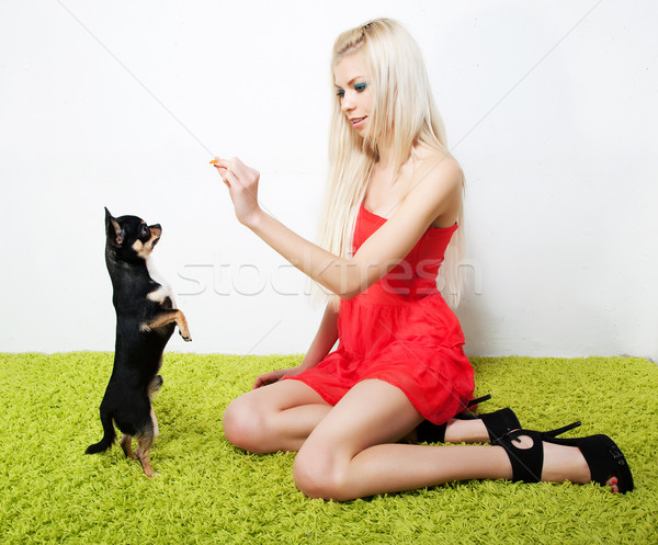 Pretty woman blond with her friend - small black dog Stock photo © gromovataya