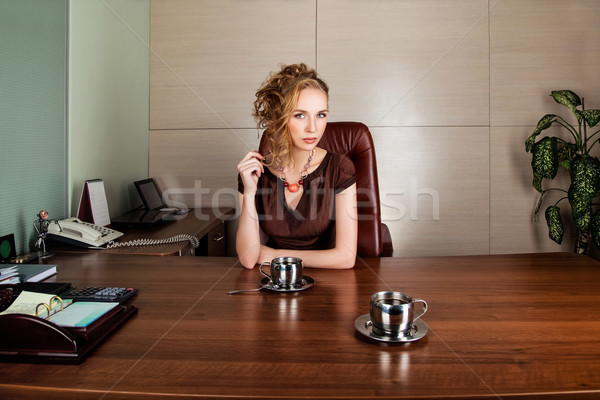 Strict business woman consultant in modern office interior Stock photo © gromovataya