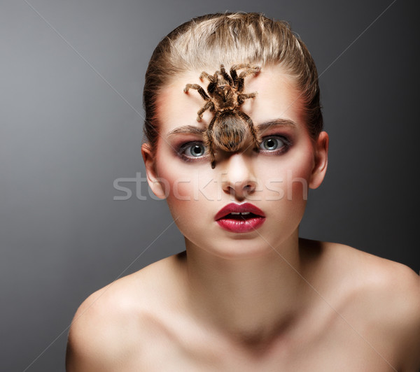 Scary Arachnid Predator on Beauty Woman Face sitting Stock photo © gromovataya