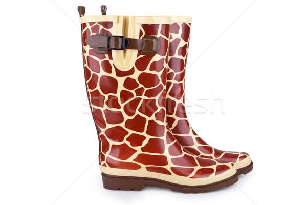 Gumboots with giraffe pattern isolated on white Stock photo © gsermek