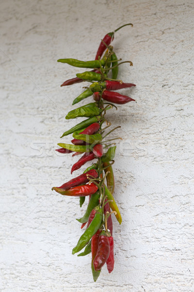 Garland of dry red chilly peppers Stock photo © gsermek