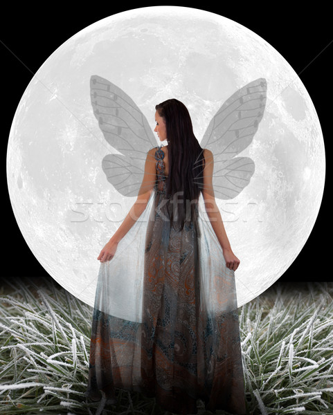 Fairy in front of a Moon. Stock photo © gsermek