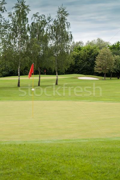 красный флаг гольф Focus дерево гольф Сток-фото © gsermek