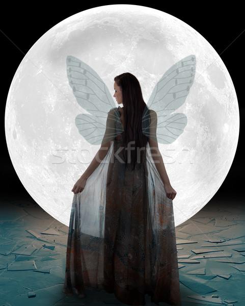 Ijs fairy lopen maan vrouw meisje Stockfoto © gsermek