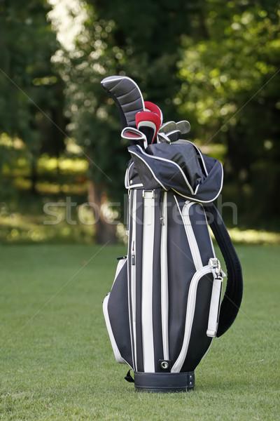 Golfütők táska tavasz fű golf fém Stock fotó © gsermek