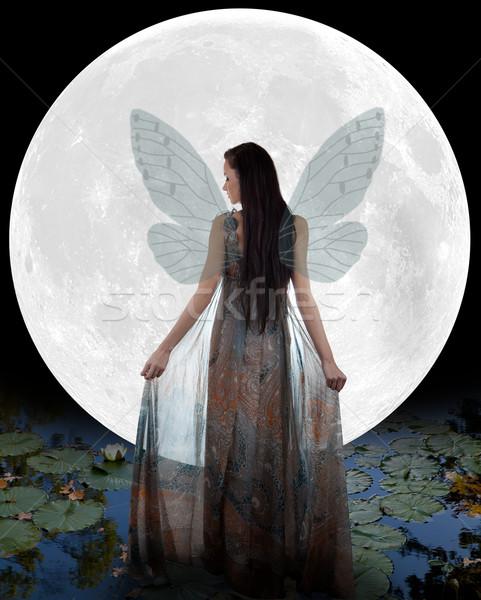 Water fairy walking into the moon Stock photo © gsermek