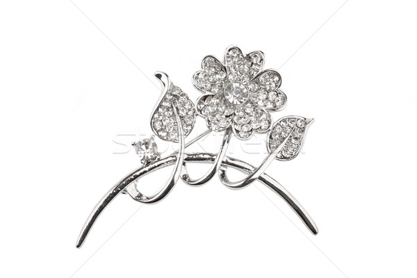 Beautiful silver flower brooch, isolated on white Stock photo © gsermek