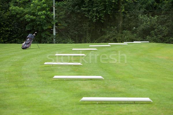Saco de golfe campo de golfe grama golfe floresta esportes Foto stock © gsermek