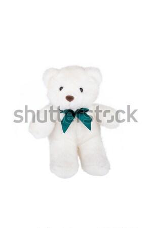 Polar osito de peluche aislado blanco feliz ojos Foto stock © gsermek