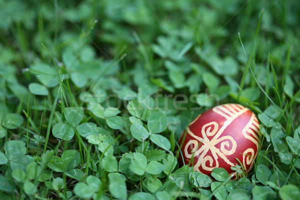 Croatian traditional Easter egg on green grass Stock photo © gsermek