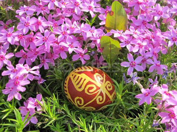Croatian traditional easter egg on green grass and flowers Stock photo © gsermek