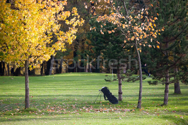 Fall season on a golf course Stock photo © gsermek
