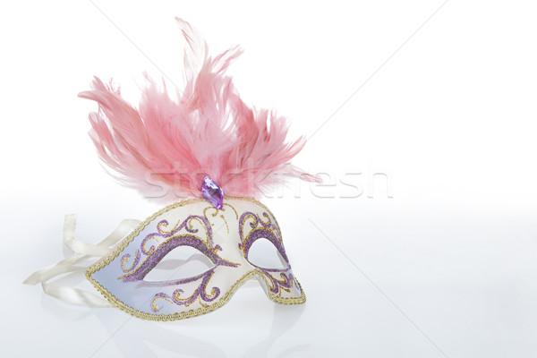 Gyönyörű karnevál maszk rózsaszín tollak tükröződés Stock fotó © gsermek