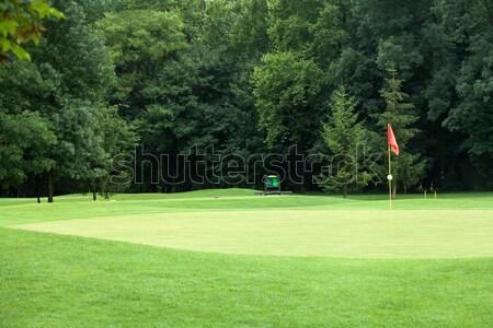 красный флаг гольф Focus дерево весны Сток-фото © gsermek