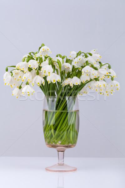 Spring snowflake (Leucojum vernum) bouquet in a vase Stock photo © gsermek