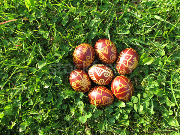 Easter eggs erba verde tradizionale Pasqua primavera felice Foto d'archivio © gsermek
